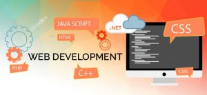Web-development-Company-in-pakistan-300x138 Web Development Pakistan
